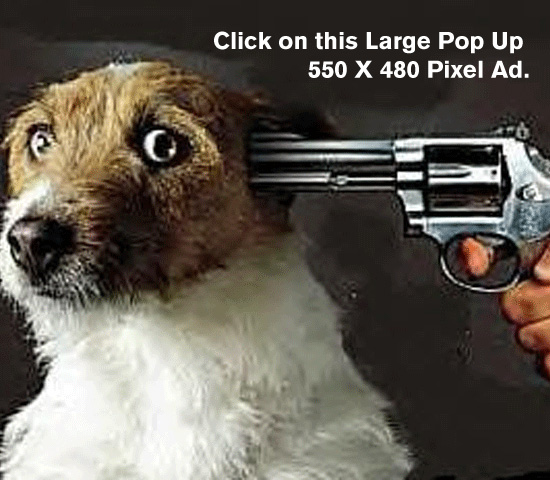 shoot_dog_text
